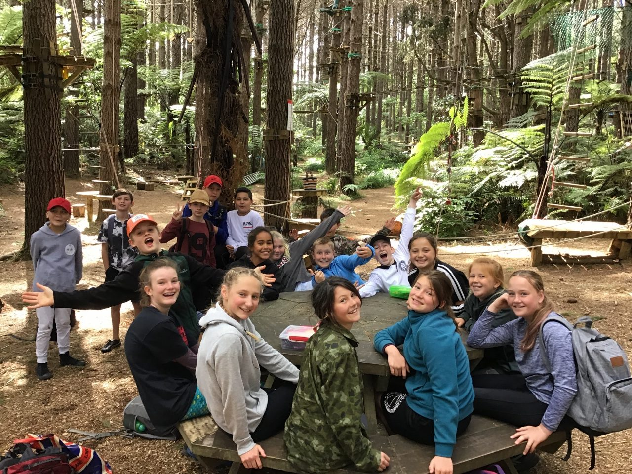 Room 5's Tree Tops Adventure
